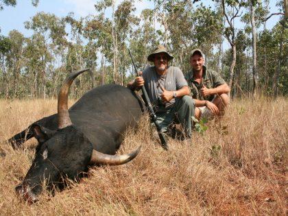 Australia Scrub Bull Hunt