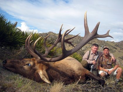 New Zealand Wapiti Hunt