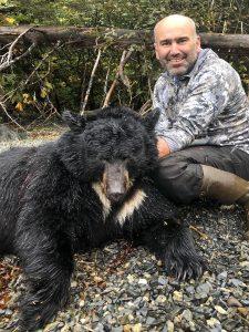Black Bear Hunt Alaska