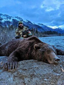 Brown Bear Hunt Alaska