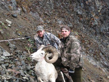 Dall Sheep Hunt Alaska