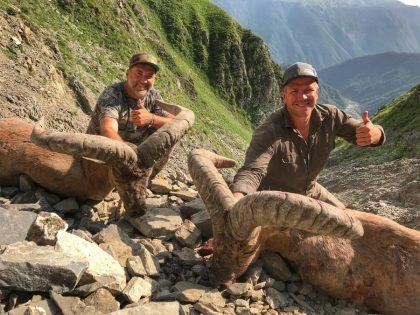 Dagestan Tur Hunt Azerbaijan