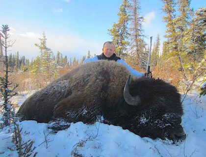 Bison Hunts in BC Canada