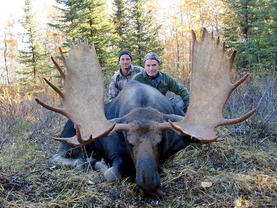 BC Moose Hunting