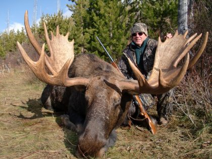 Moose BC Canada