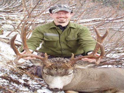 British Columbia Mule Deer