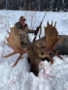 British Columbia Moose