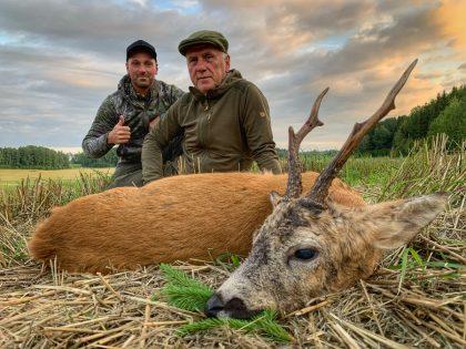 Roebuck Hunting Sweden