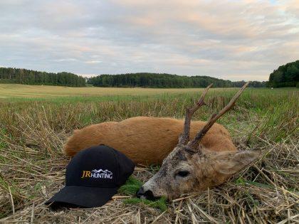 Sweden Roebuck Hunting