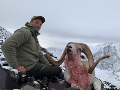 Wild Sheep Hunting Kyrgyzstan