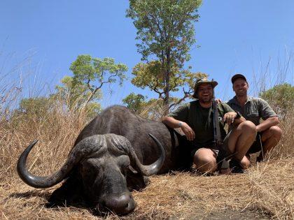 Mozambique Buffalo Hunting