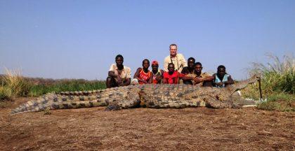 Mozambique Crocodile