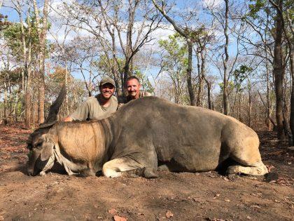 Mozambique Eland Hunting