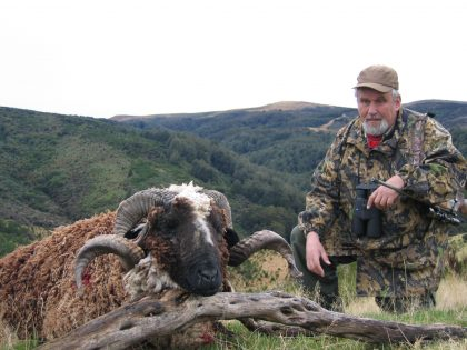 New Zealand Arapawa Hunting
