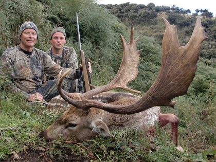 Hunt Fallow Deer in New Zealand