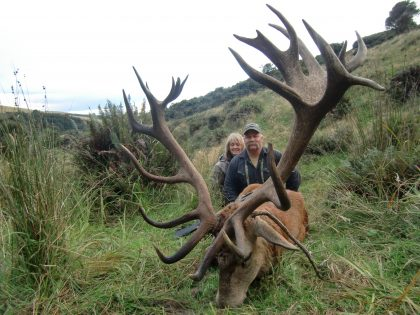 New Zealand Red Stag Hunting