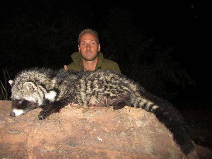 Civet Hunt in South Africa