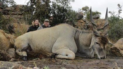 South Africa Eland