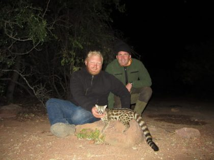 South Africa Genet Hunting