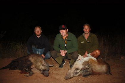Hyena Hunt in South Africa