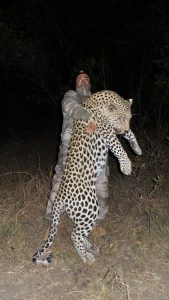 South Africa Leopard Hunting