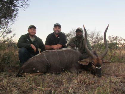 South Africa Nyala Hunting