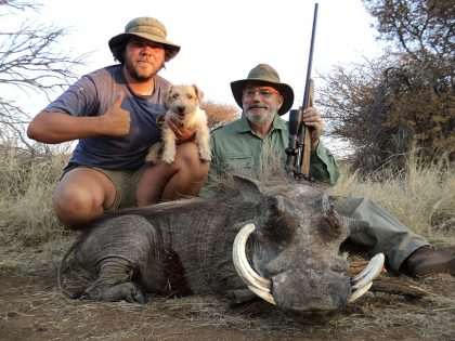 Warthog Hunt in South Africa