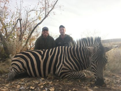 South Africa Zebra Hunting