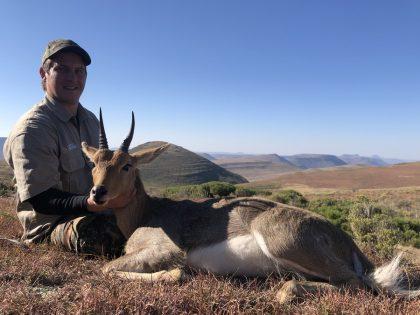 South Africa Reedbuck