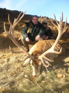 Spain Red Stag Hunting