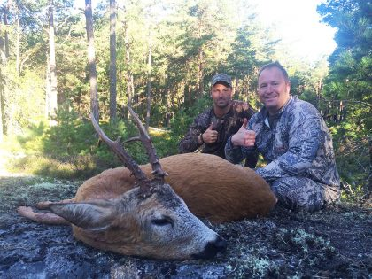 Hunting Roebuck in Sweden