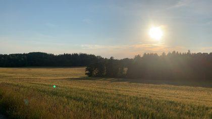 Hunt Sweden