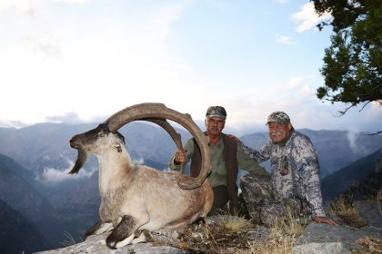 Ibex Hunting in Turkey