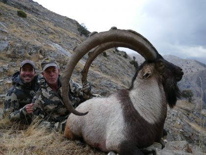 Ibex Hunting Turkey