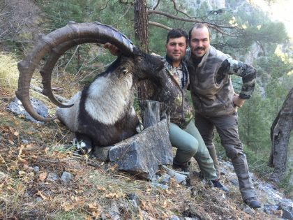 Turkey Bezoar Hunting