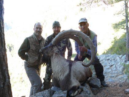 Turkey Bezoar Hunting