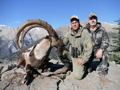 Turkey Bezoar Ibex Hunting