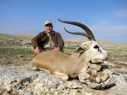 Turkey Gazelle Hunting