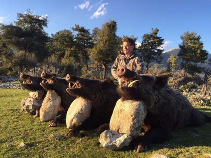 Turkey Wild Boar Hunting