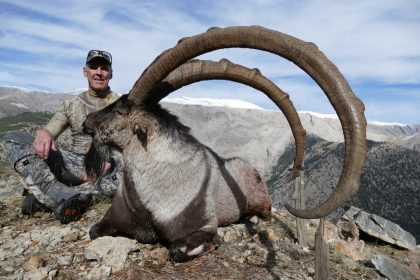 Turkey Becoar Ibex