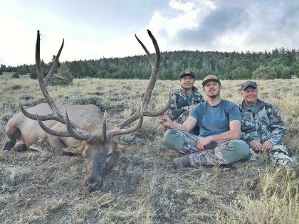 Elk Hunting in the US