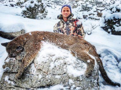 USA Mountain Lion Hunting