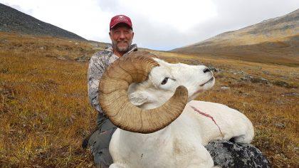 Yukon Dall Sheep Hunting