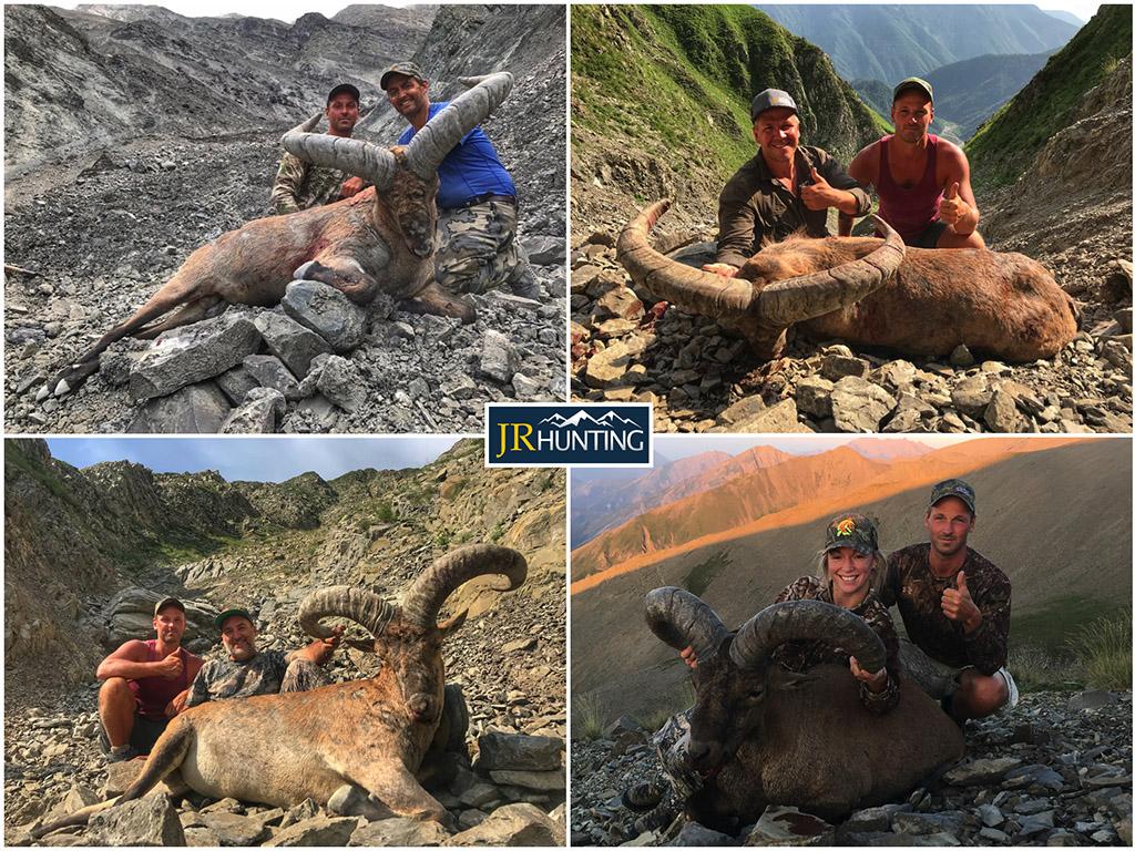 Dagestan Tur Hunts in Azerbaijan