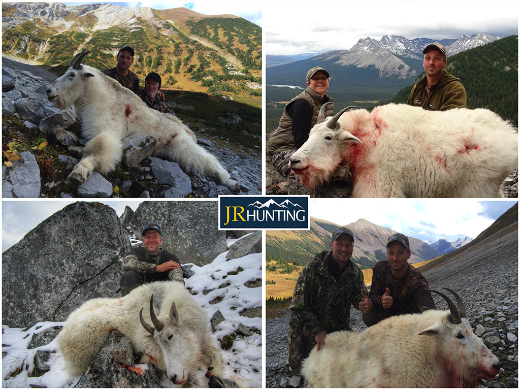 Mountain Goat Hunts in BC