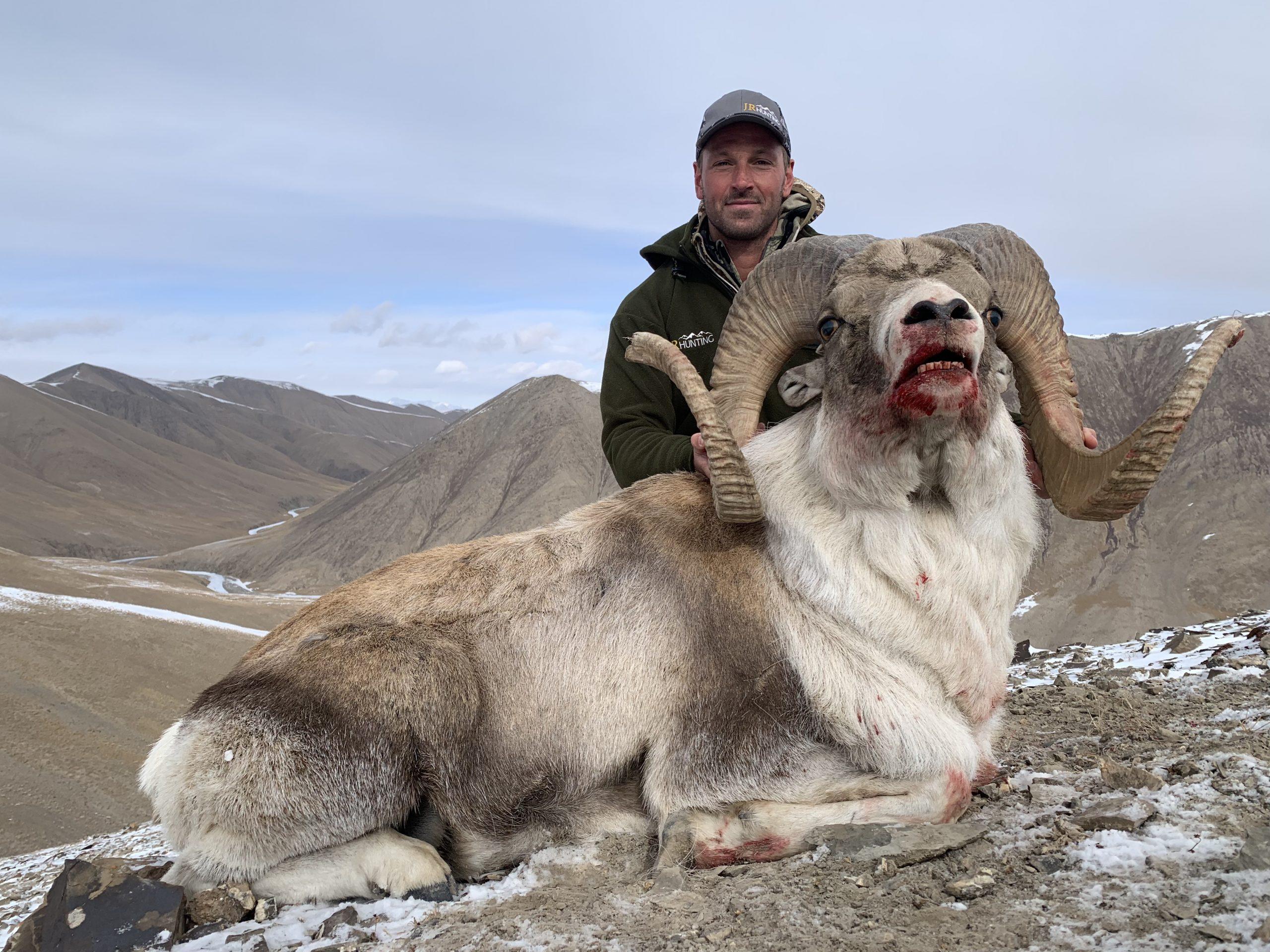 Kyrgyzstan Argali