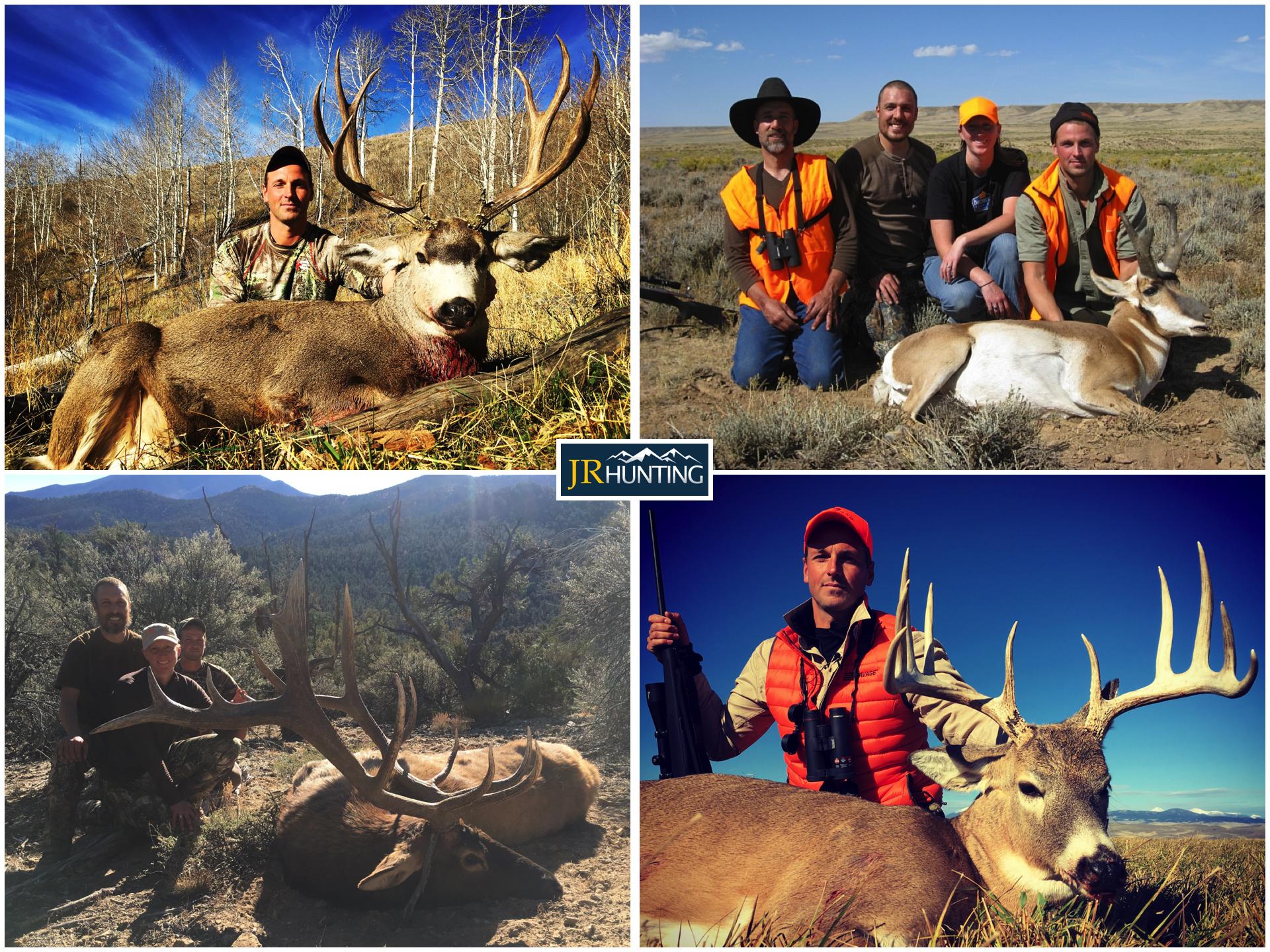 USA Deer Elk