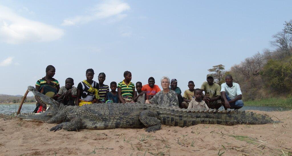 Mozambique Croc